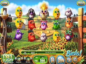 Birds! pokies