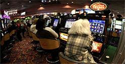 Australian gambling losses