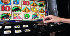Cairns pokies losses